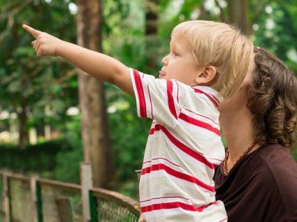 Miúdos têm entrada gratuita no Zoológico de Santo Inácio