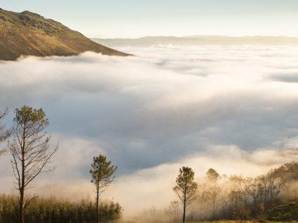 Baião: paisagens deslumbrantes com sabor a Douro