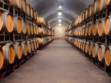 Caves de Vinho do Porto: 10 marcas que vale a pena saborear