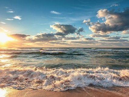 Praia de Faro interdita a banhos por elevado nível de coliformes fecais