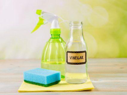 frasco de vinagre,detergente e esfregão