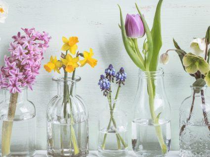 Decorar com garrafas de vidro: 10 ideias cheias de estilo