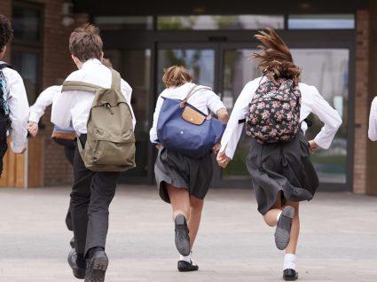 Mochilas escolares: como escolher e onde comprar