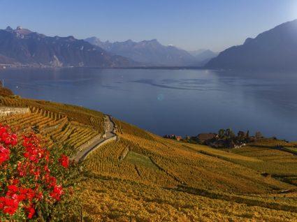 Vaud: apaixone-se pelas belas paisagens da Suíça