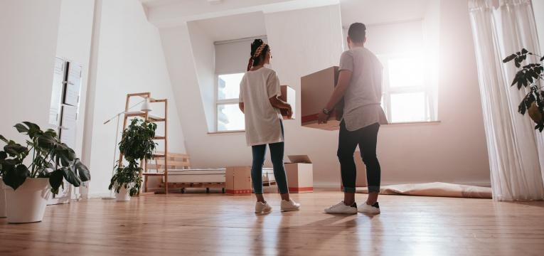o que saber antes de alugar casa