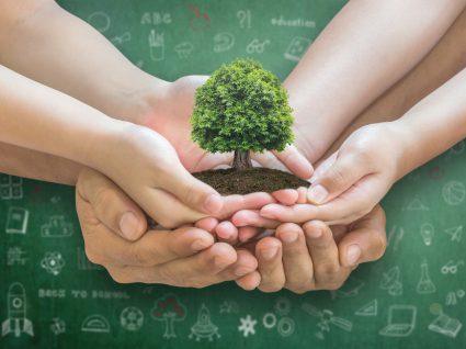 pessoas a segurar árvore por um regresso às aulas mais amigo do ambiente
