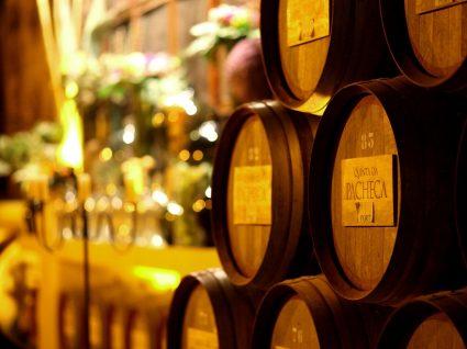 Barris de vinho na Quinta da Pacheca