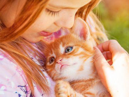 adoptar um animal com crianças em casa