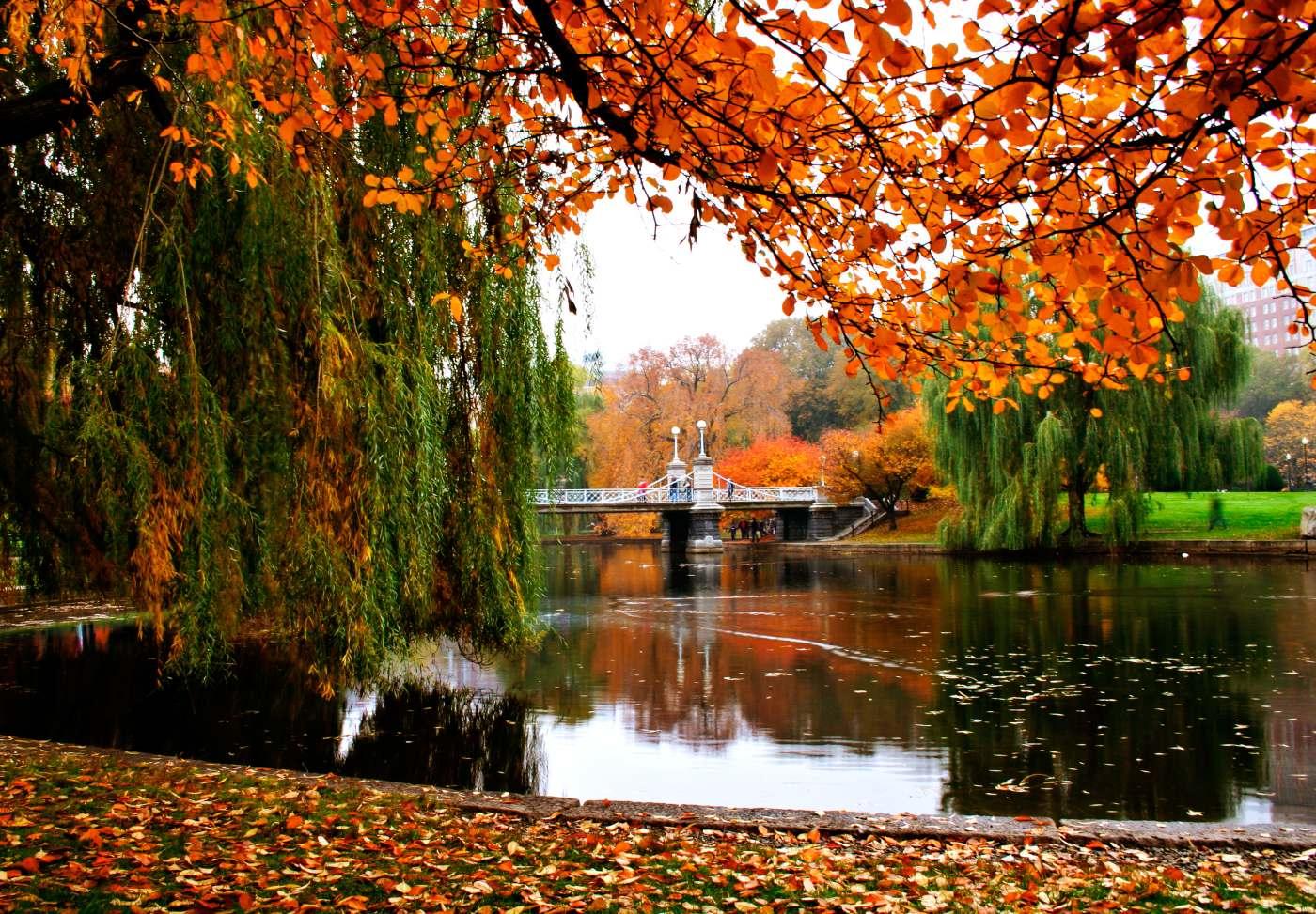 Jardim público em Boston