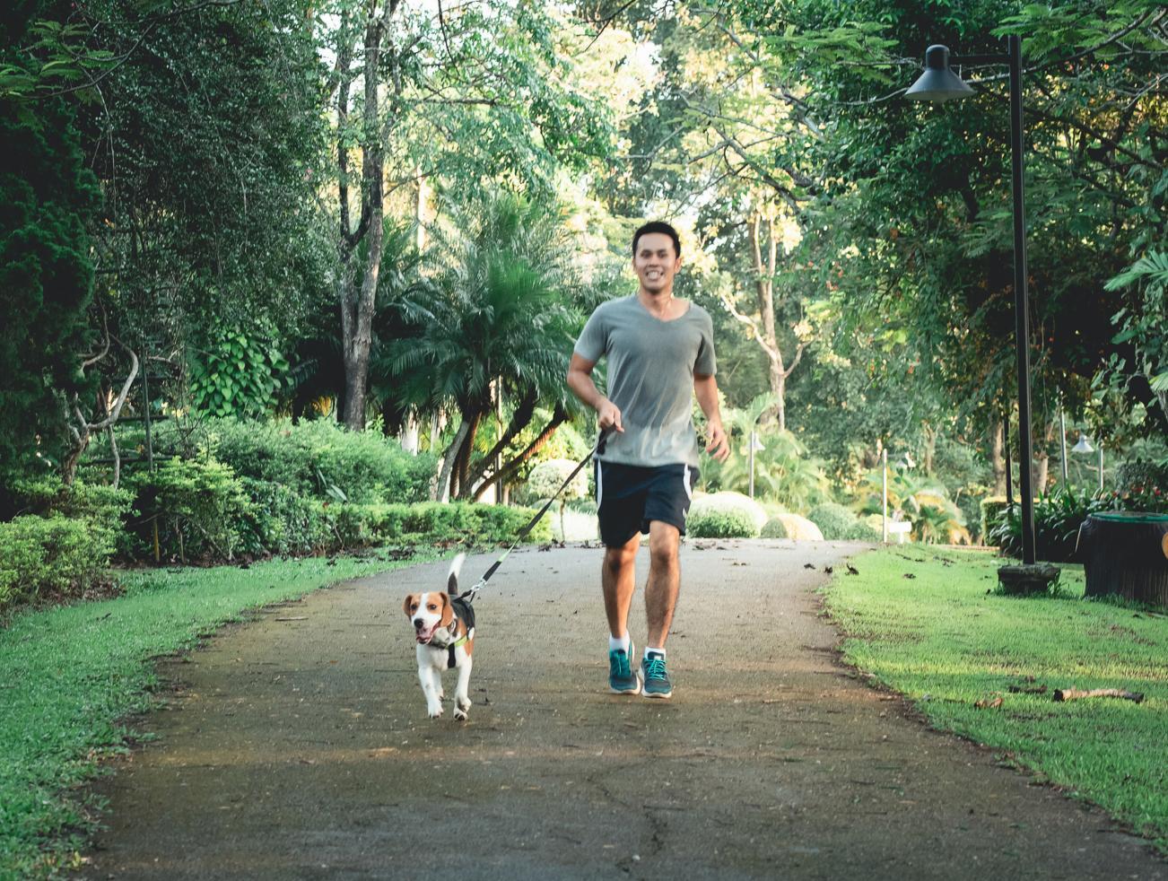 Homem a correr com o cão