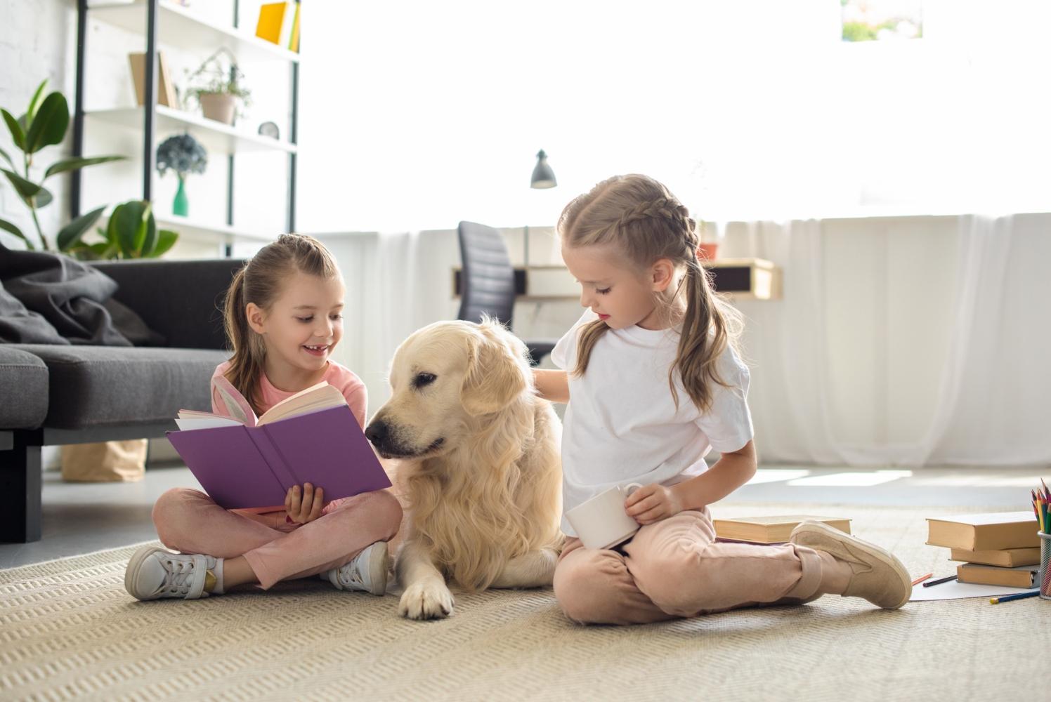 animal adoptado com crianças em casa