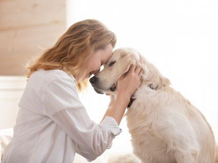 dona com cão a cuidar de animais quando envelhecem