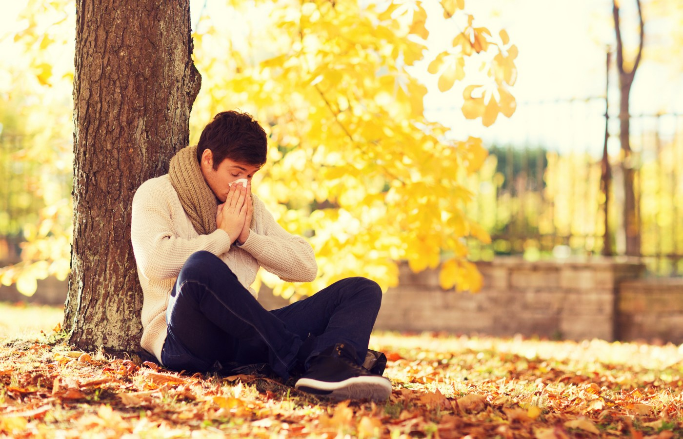homem a espirrar sentado junto a árvore
