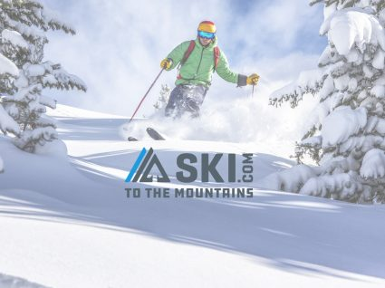 emprego ski
