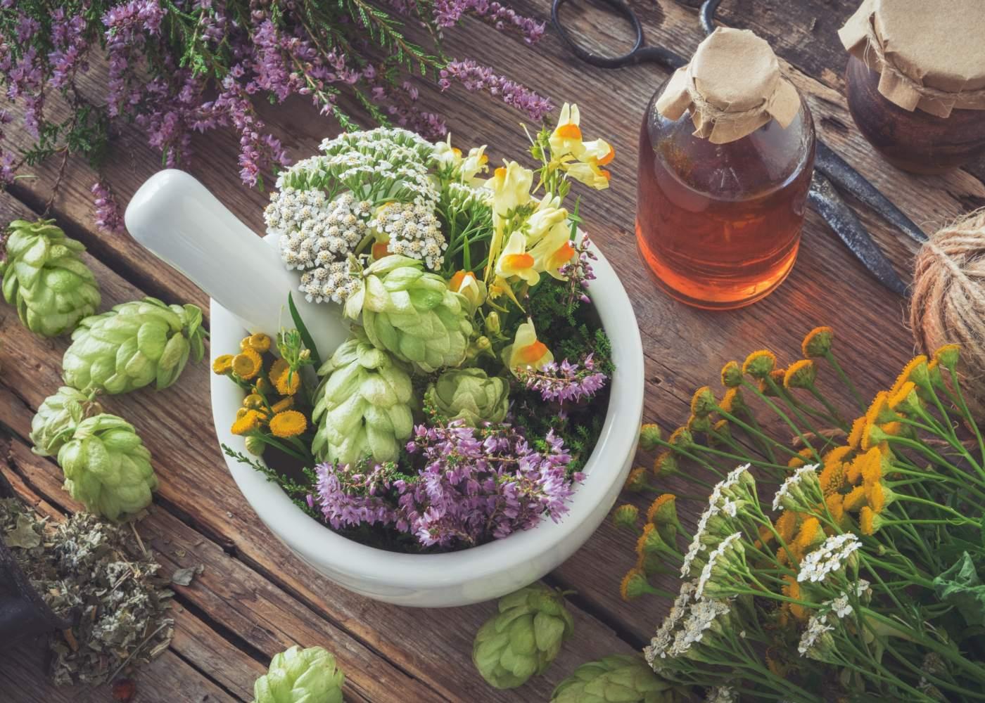 especiarias e ervas boas para a saúde