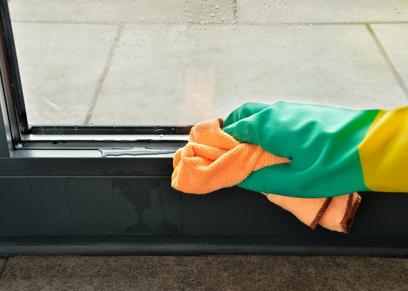 limpar janela