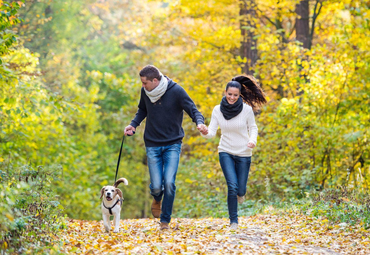 Casal a passear cão