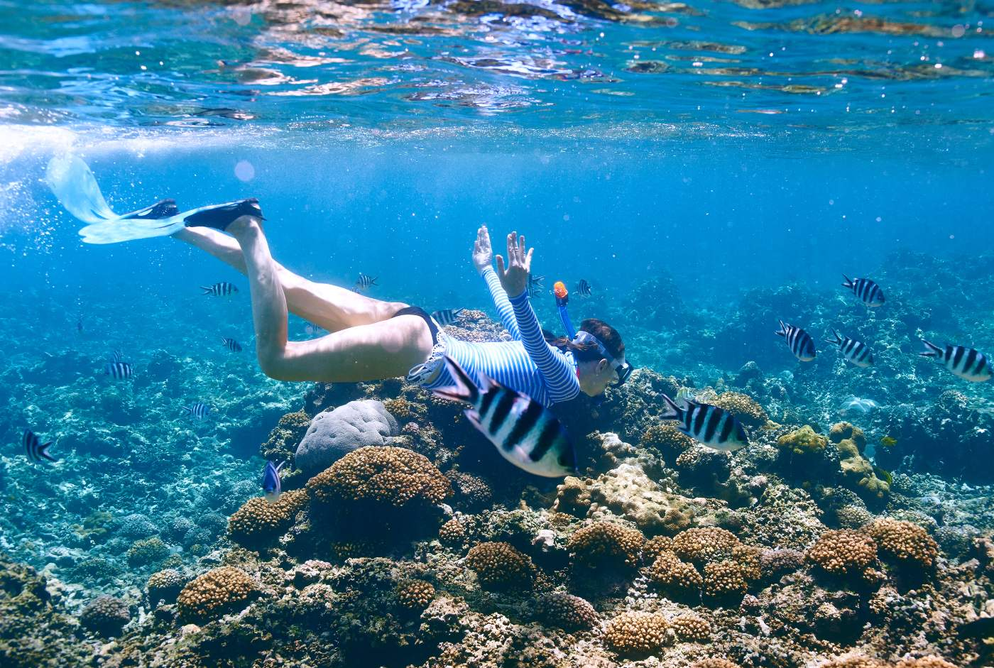 Mergulho nas ilhas Seychelles