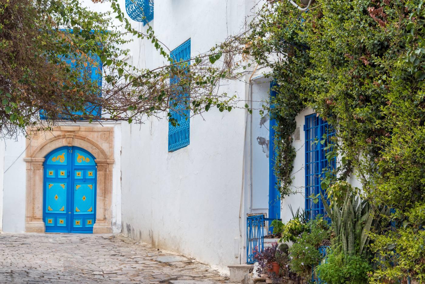 Casas típicas de Sidi Bou Said