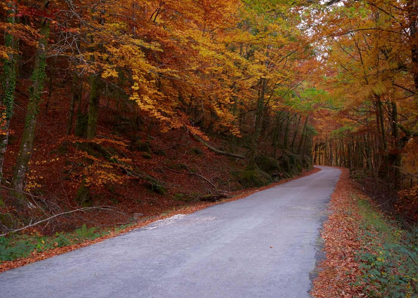 Estrada no Gerês