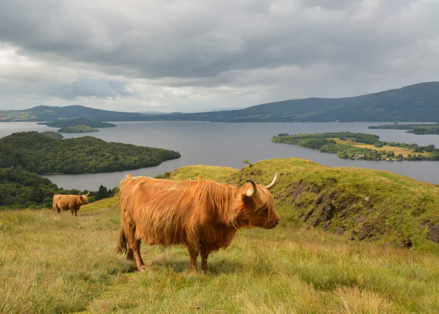 Loch Lomond nas Highlands daEscócia