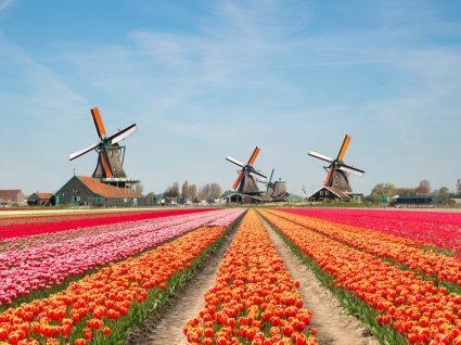 Paisagem dos Países Baixos