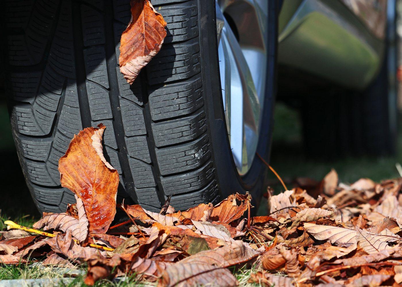 pneu a calcar folhas