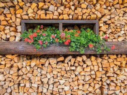 parede de madeira com canteiro de flores