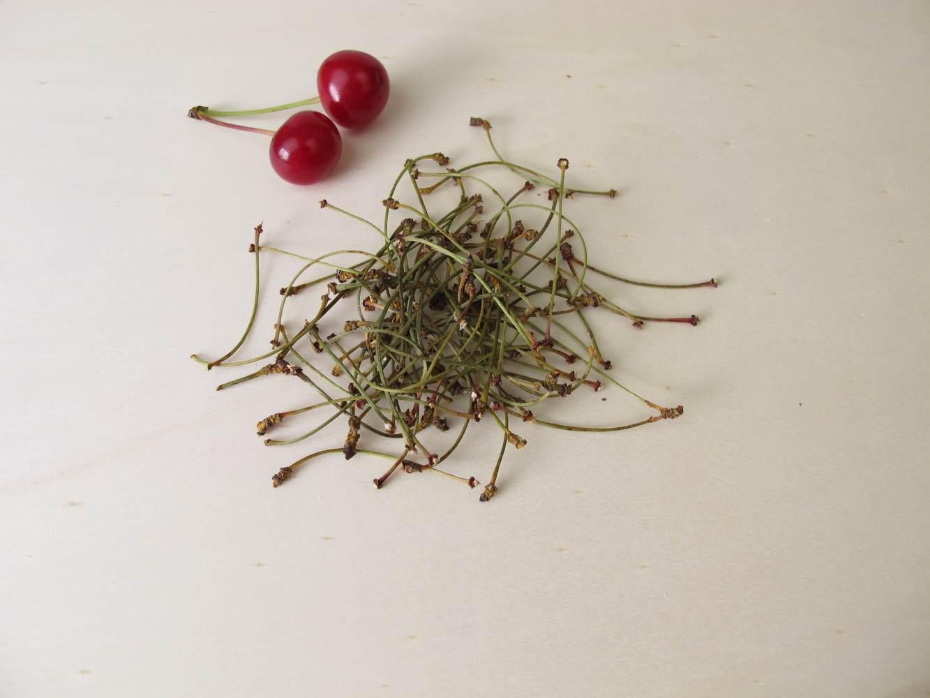 pés de cereja para preparar chá