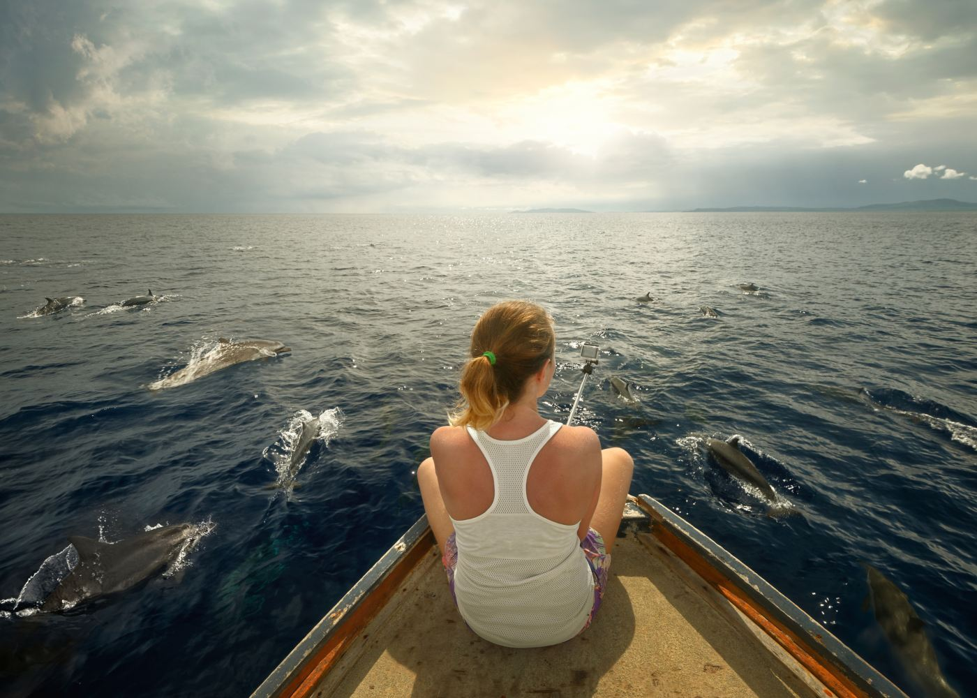 Mulher a ver e fotografar golfinhos