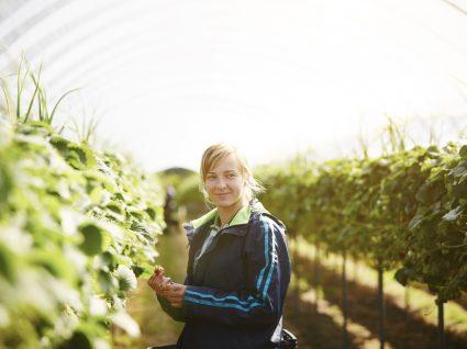 Isenção de IRS a estudantes que trabalhem na agricultura