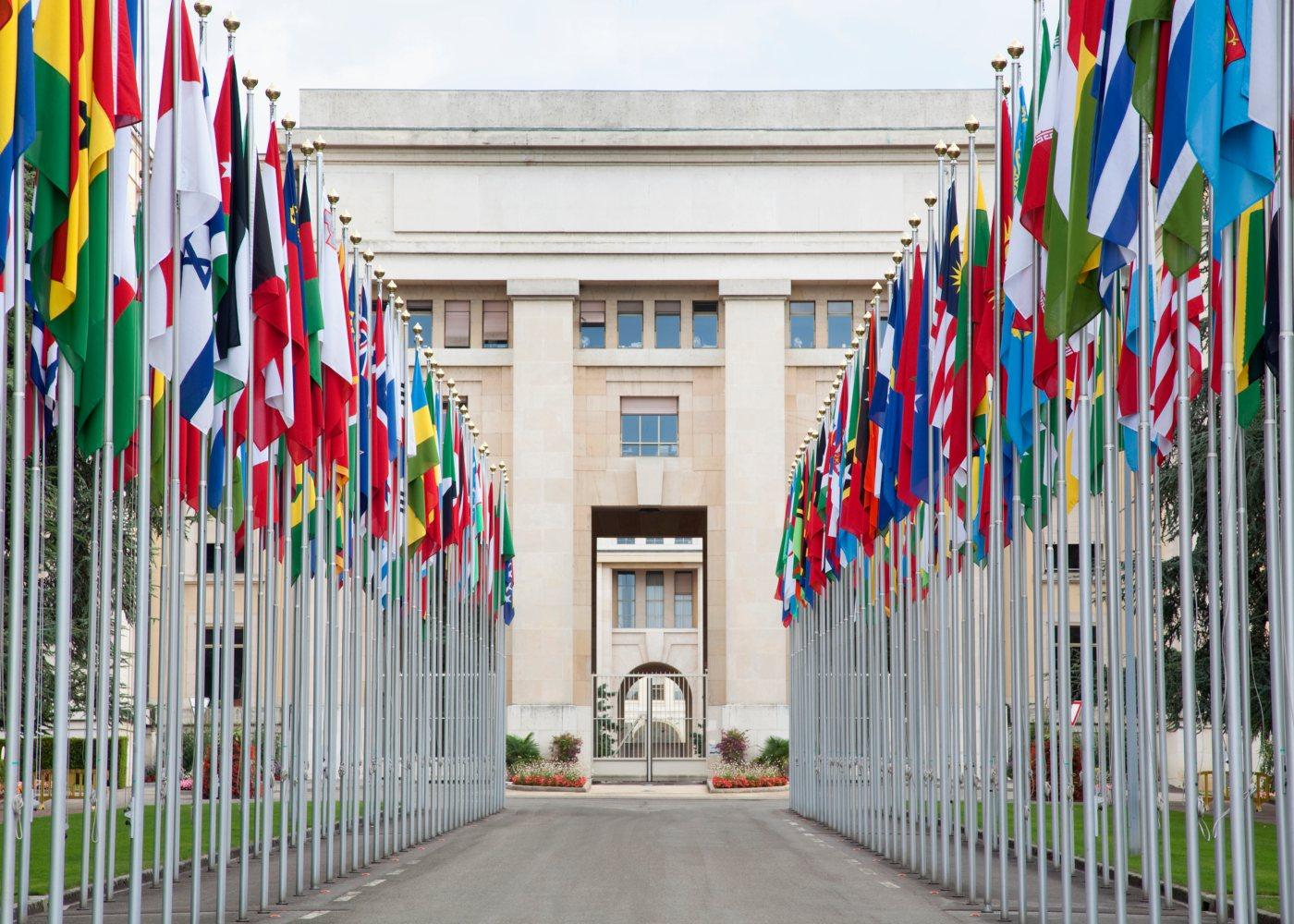 ONU e OMS