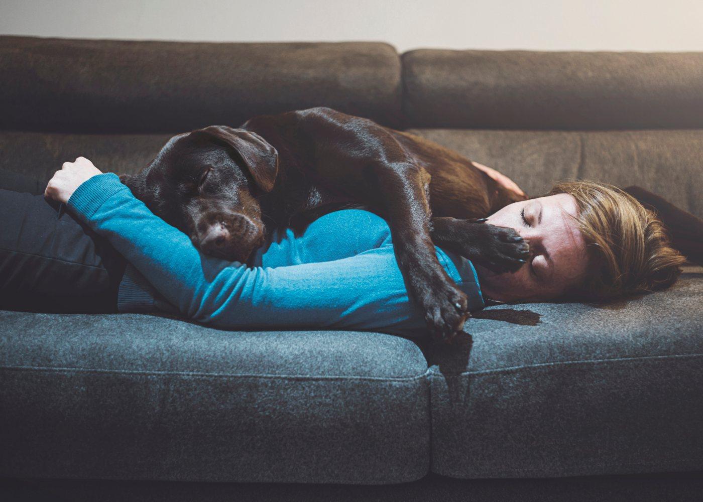 Mulher a dormir com cão no sofá