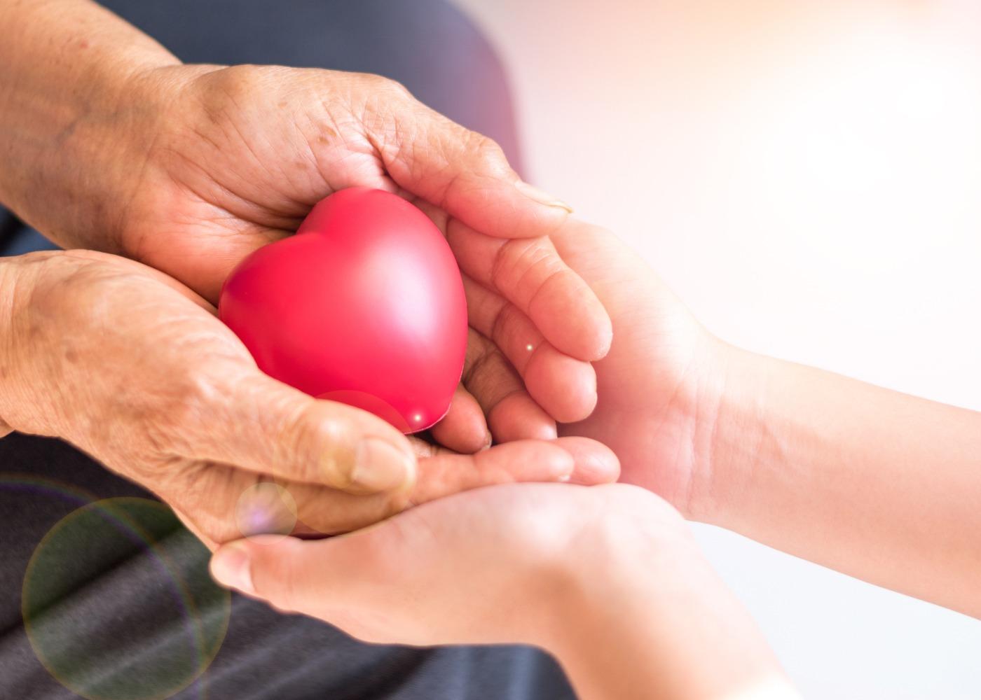 mãos de jovem a segurar mãos de um idoso com um coração