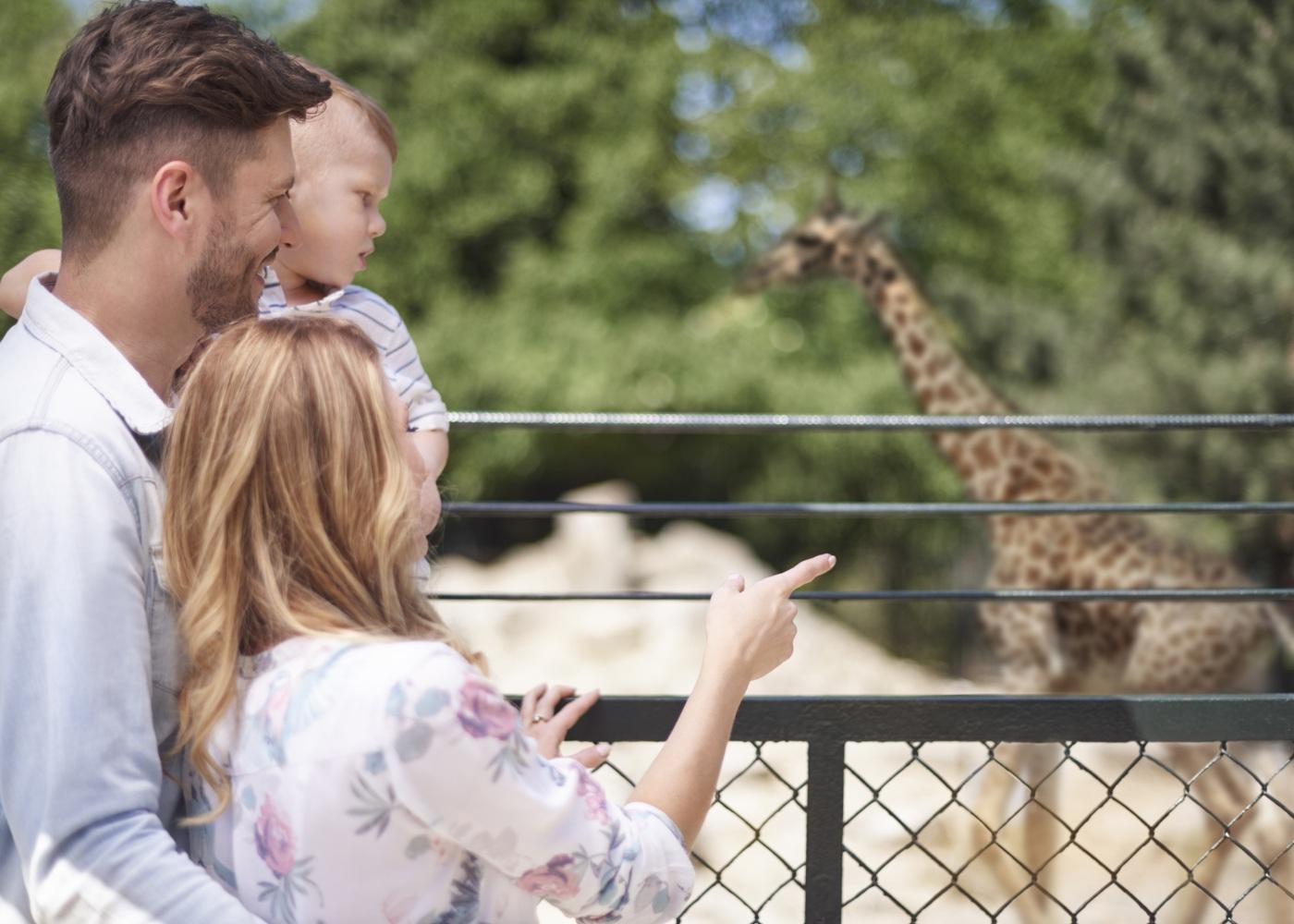 família jardim zoológico