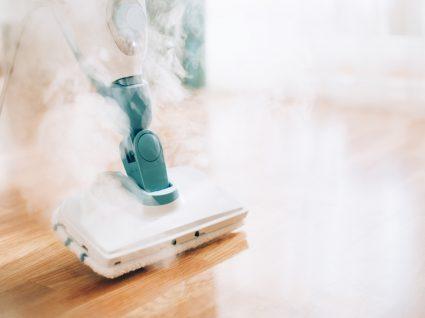 limpeza a vapor
