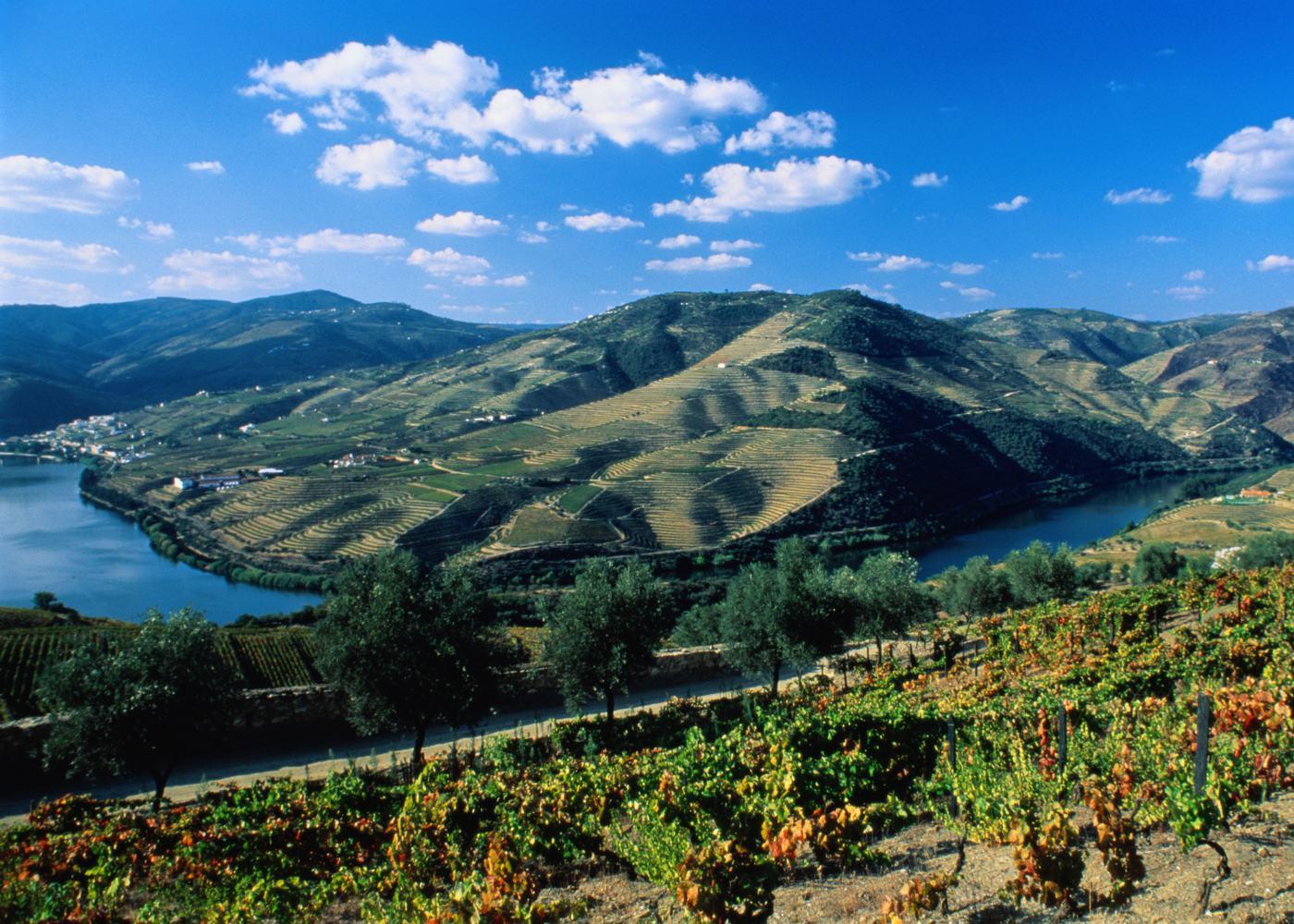 Vista do Vale do Douro