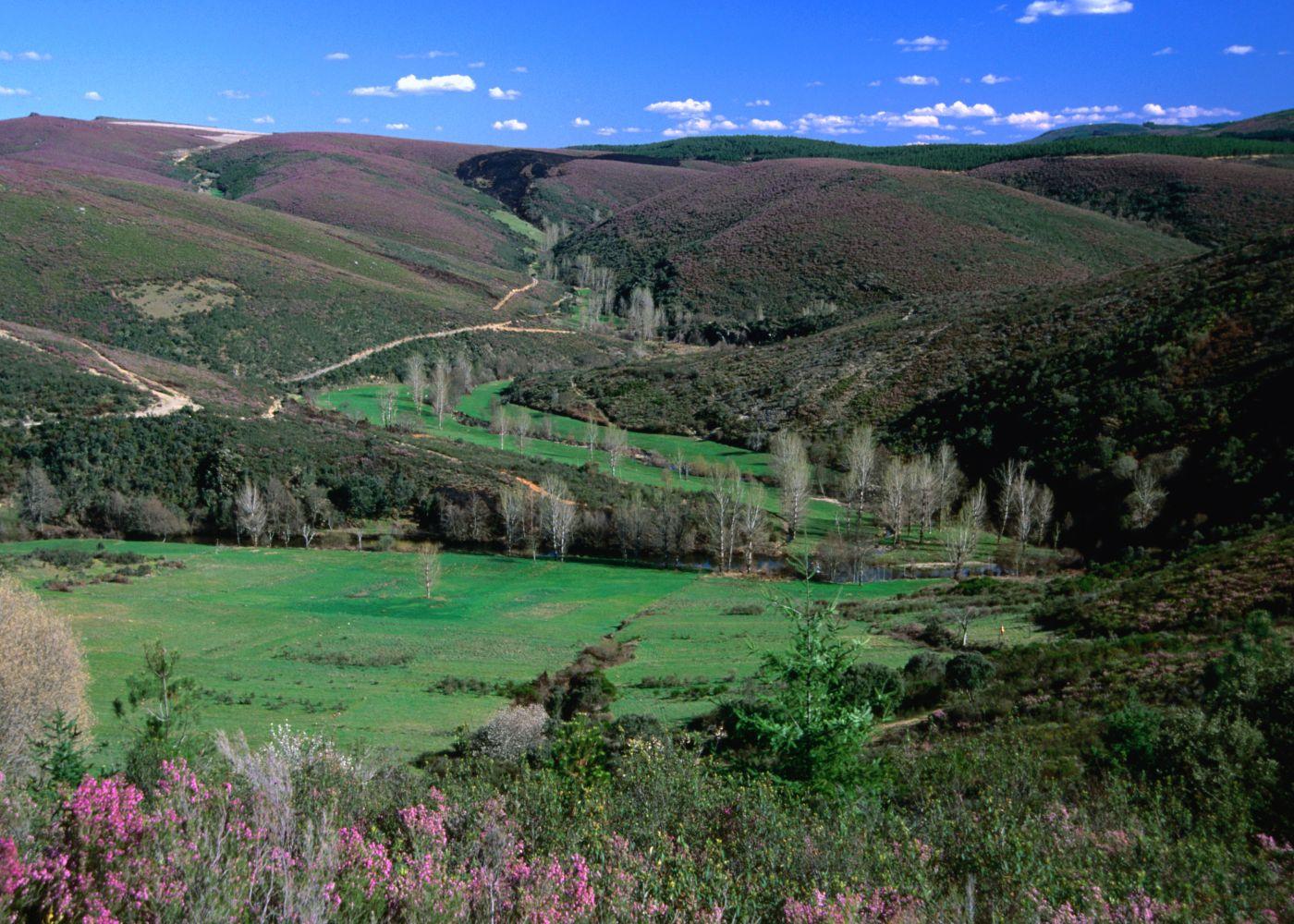 paisagem parque montesinho