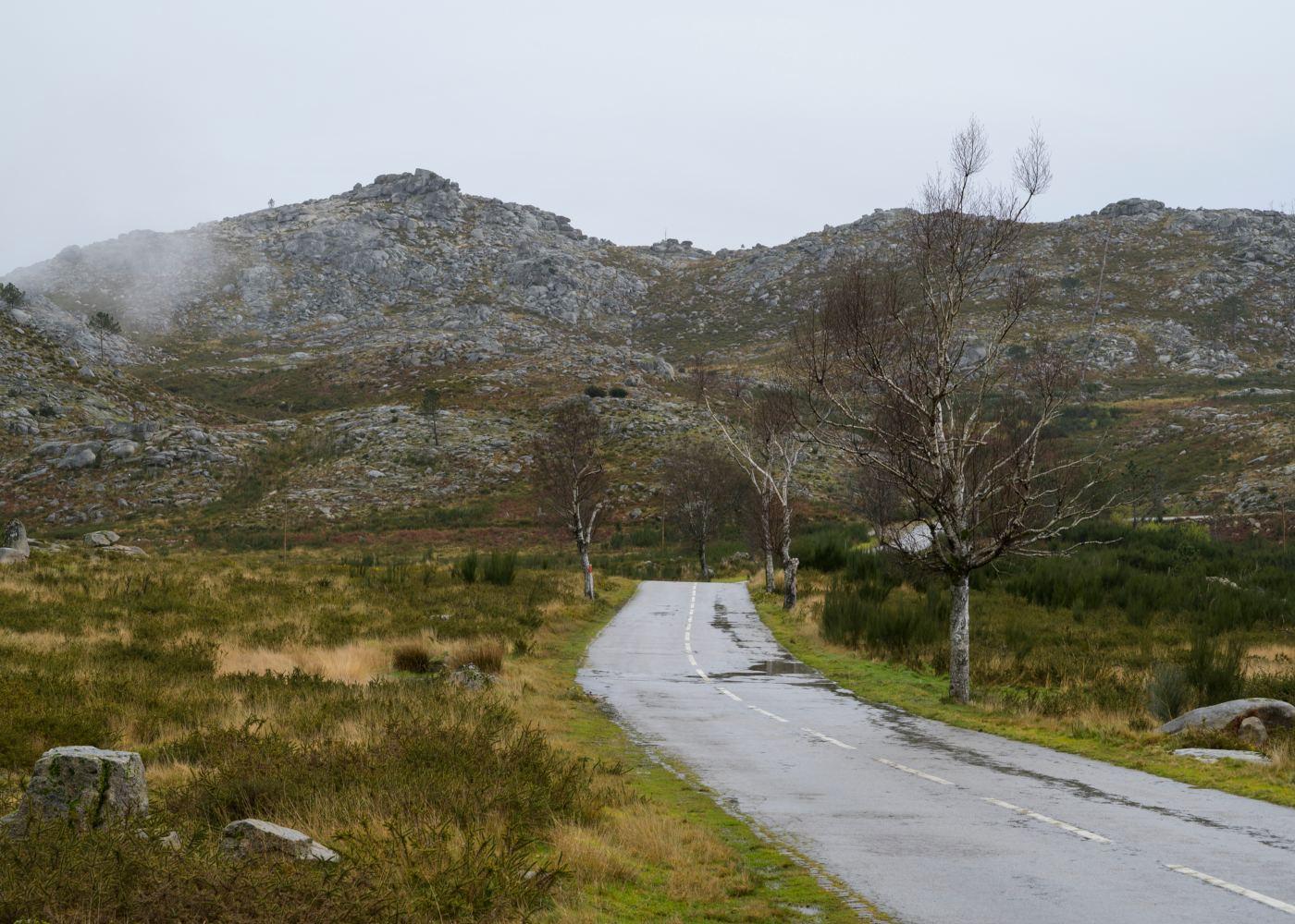 Estrada na Serra da Freita