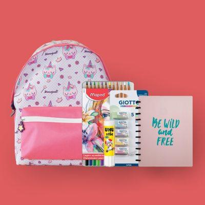 mochila rosa, caderno, cola e outros materiais escolares