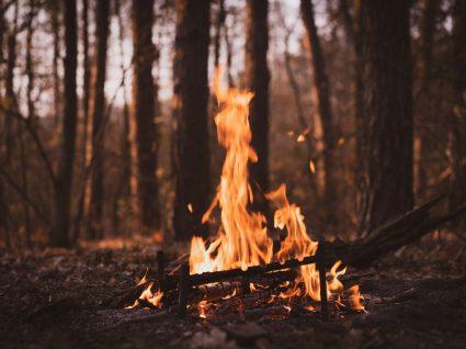queimas e queimadas