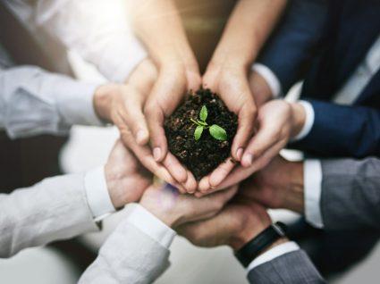 grupo de pessoas a segurar planta em representação de empregos verdes