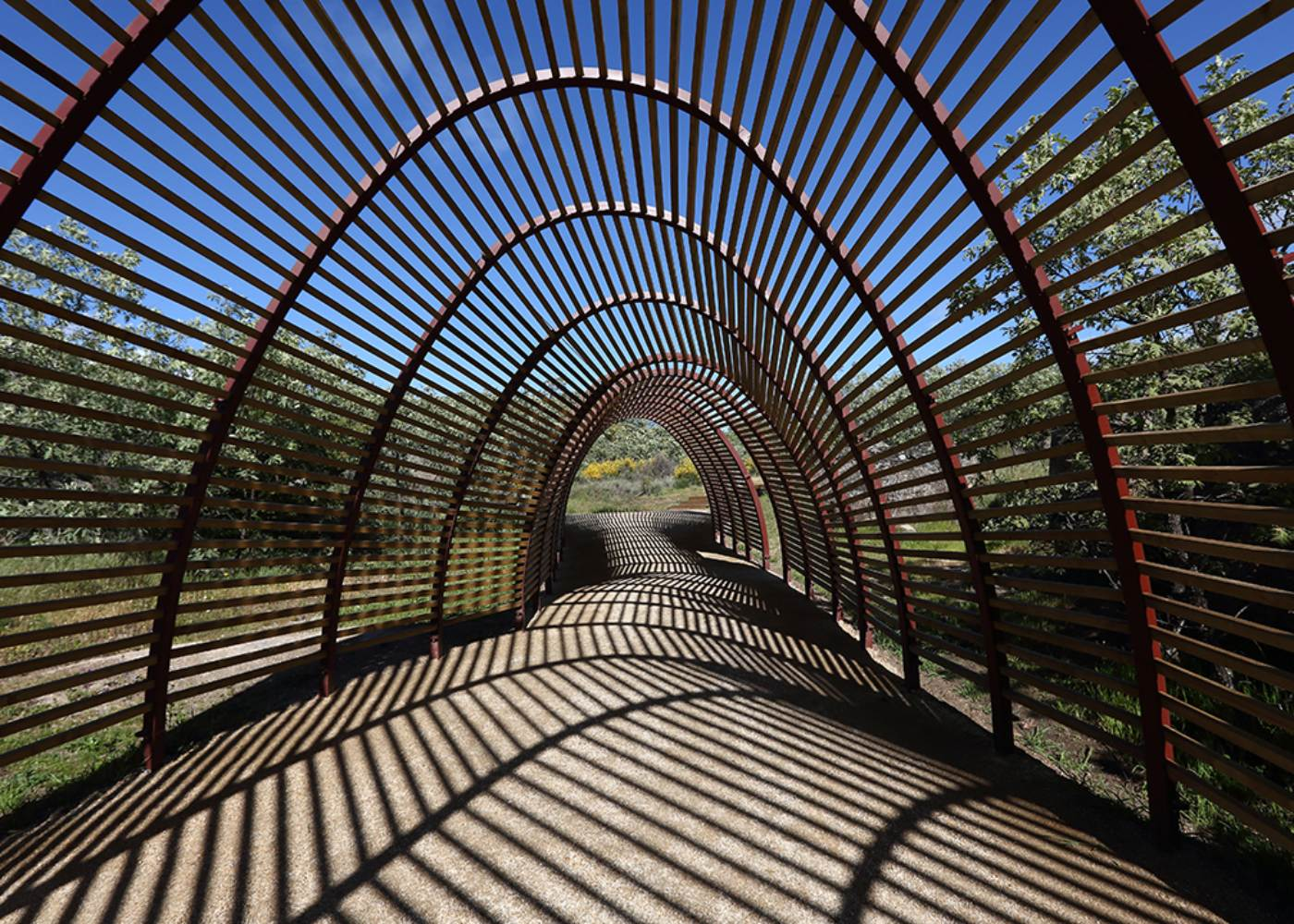 Parque barrocal túnel do lagarto