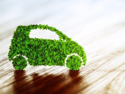 carro feito de folhas a representar a sustentabilidade da hyundai