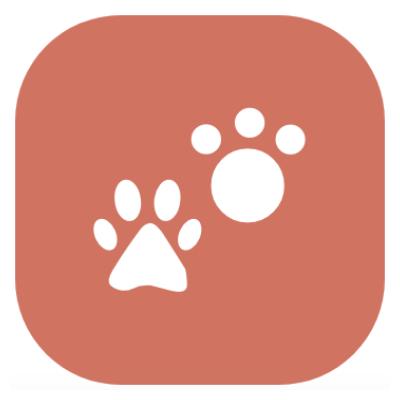 e-fatura atividades veterinárias