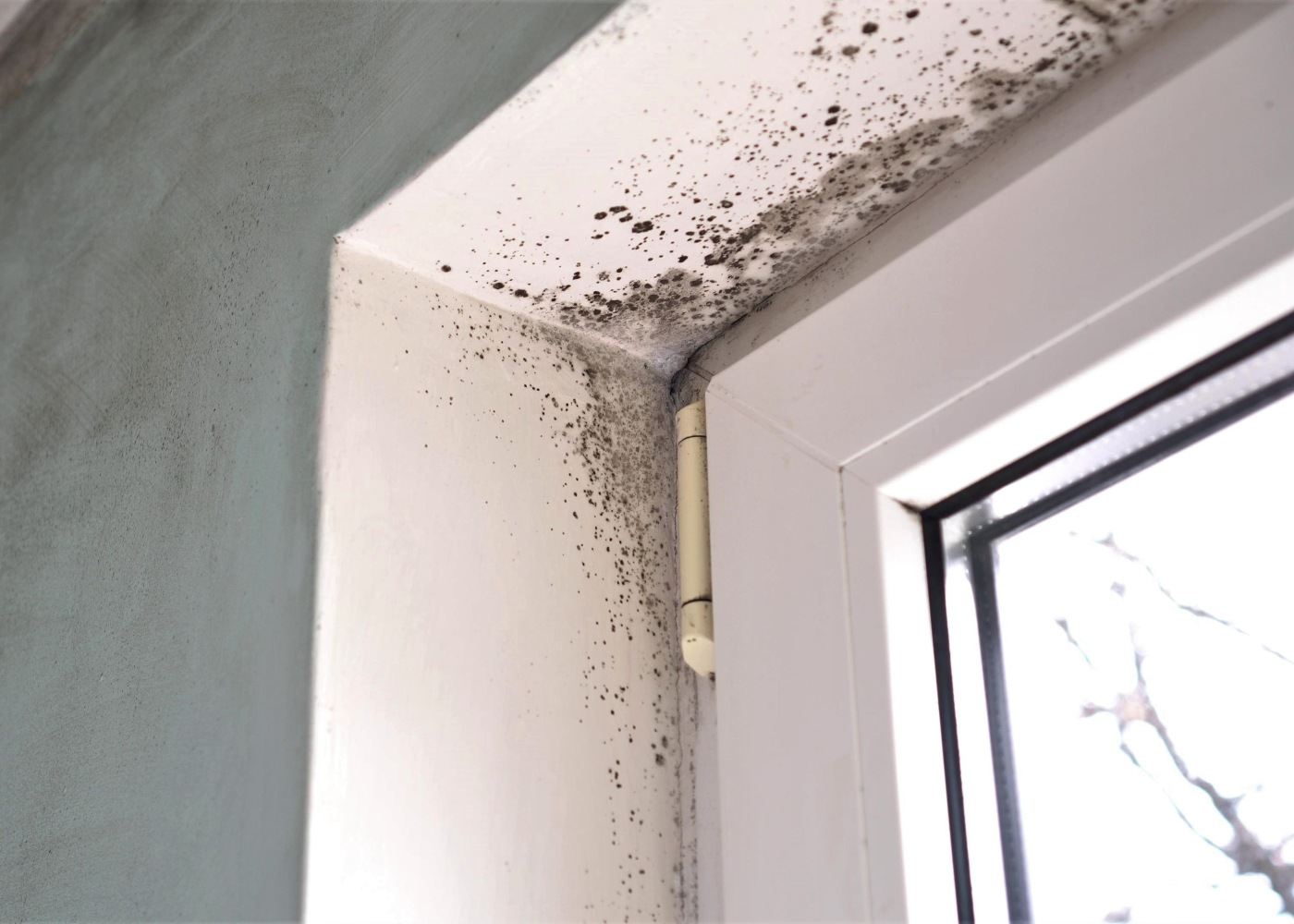 humidade na janela