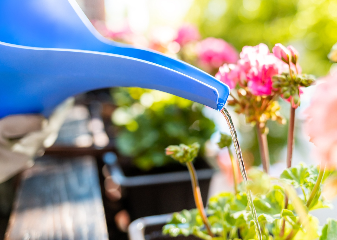 Mulher a regar plantas na varanda