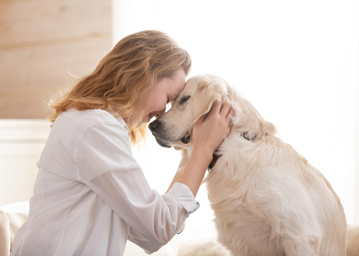 Mulher a acariciar cão sénior