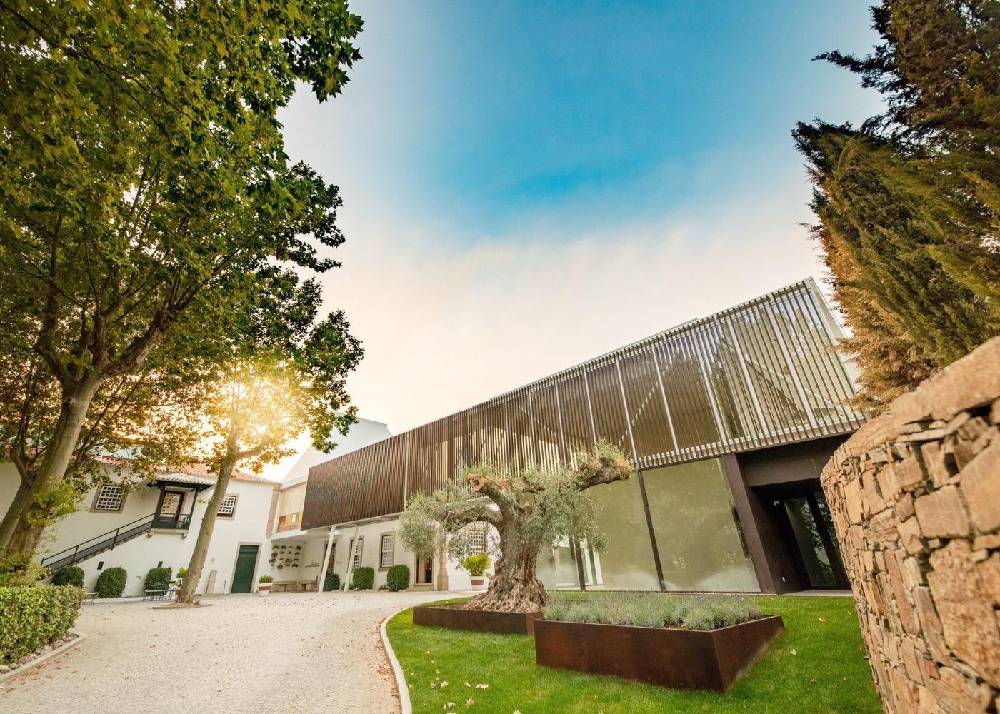 The Wine House da Quinta da Pacheca