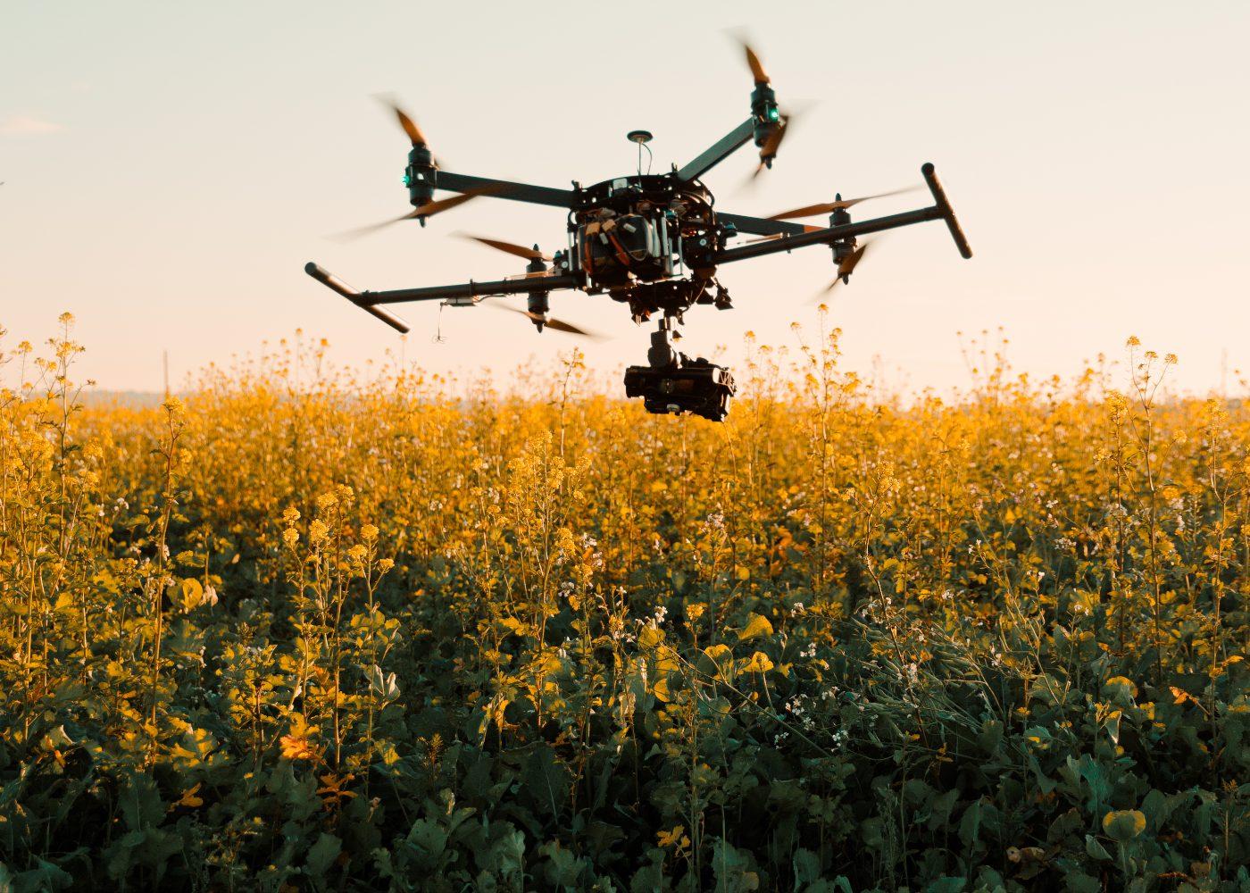 Drone a sobrevoar campo